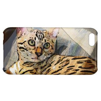 SIMON IN LIGHT iPhone 5C CASES