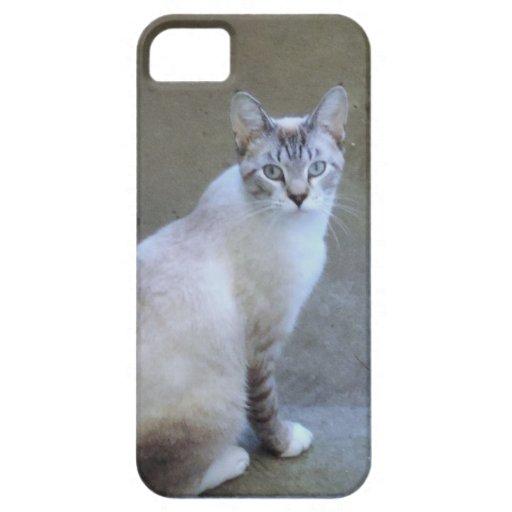 Simon the Blue Eyed Cat iPhone 5 Case