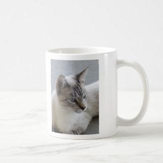 Simon The Feral Now Lovable Cat Photo Design Mug