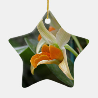Simple Grace Ceramic Star Ornament