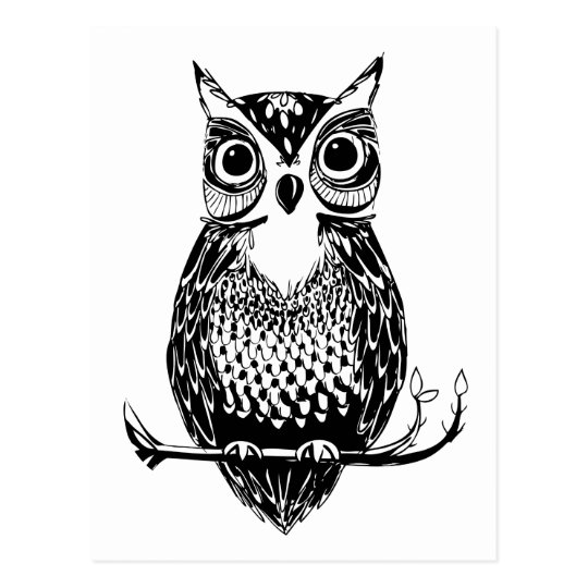 Simple Illustrated Owl Postcard