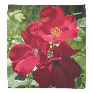 Simple Red Roses Bandana