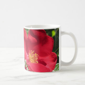 Simple Red Roses Coffee Mug