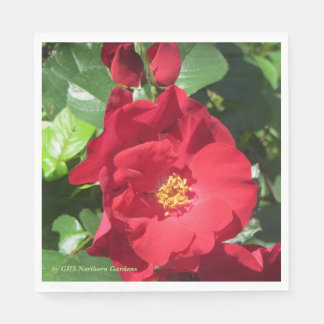 Simple Red Roses Paper Napkin