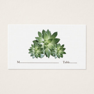 Simple Succulent Wedding Place Cards