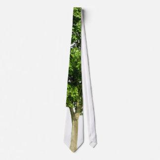 Simple Tree Tie