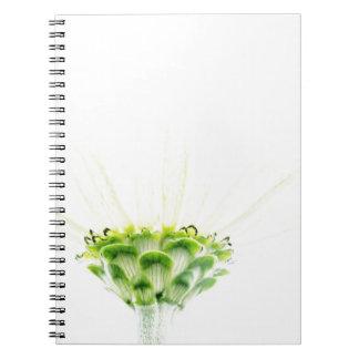 Simplistic White Zinnia Spiral Notebook