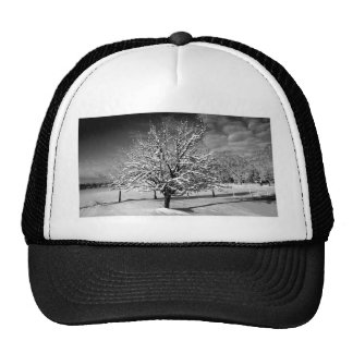 Simply Beautiful Trucker Hat
