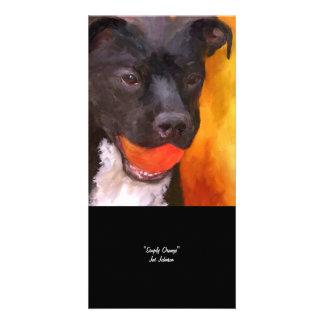 Simply Orange Dog Art Photo Card