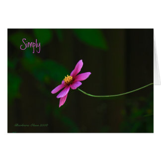 Simply:  Thank You! Card