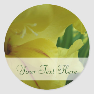 Simply Yellow Gladiolus Sticker