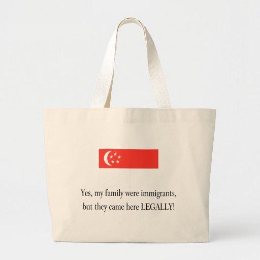 Singapore Canvas Bag