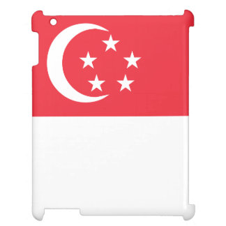 Singapore Flag Case For The iPad 2 3 4