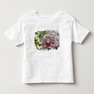 Singapore (Sanskrit for Lion City). National Toddler T-shirt