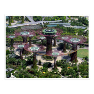 singapore supertrees postcard