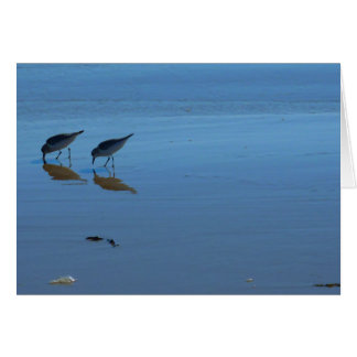 Singing Beach Sandpipers Card