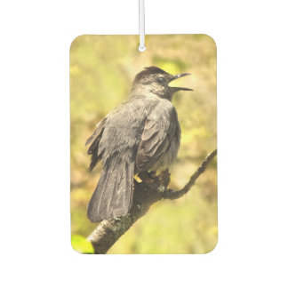 Singing Gray Catbird Animal Air Freshener