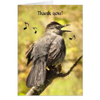 Singing Gray Catbird Thank You Card