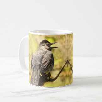 Singing Gray Catbirds Mug