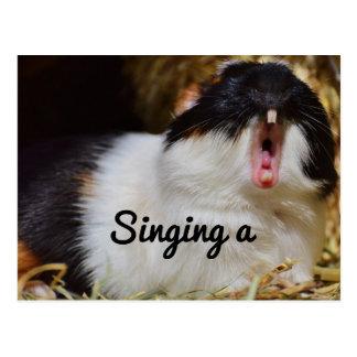 Singing Guinea Pig Postcard