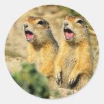 Singing Prairie Dogs Round Stickers