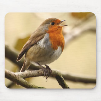 Singing Robin Mouse Pad