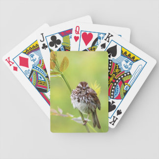 Singing Sparrow Bicycle Playing Cards