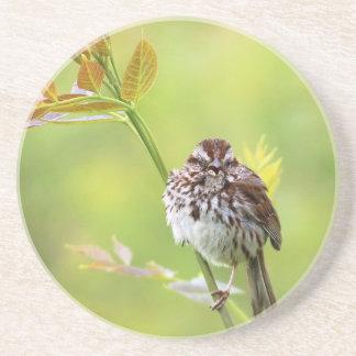 Singing Sparrow Coaster