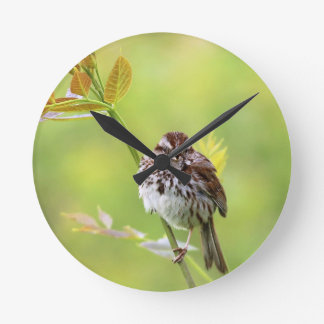 Singing Sparrow Round Clock