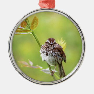 Singing Sparrow Silver-Colored Round Ornament
