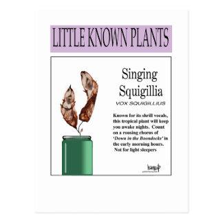 SingingSquigillia.png Postcard
