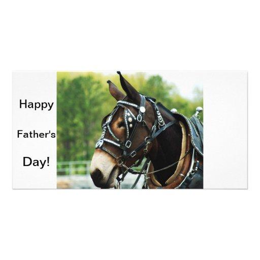 single black mule personalized photo card