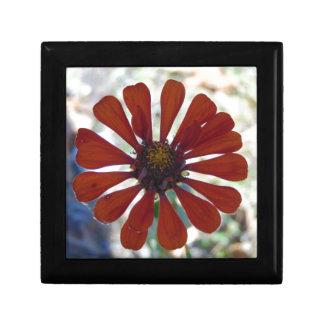 Single Bloom Gift Box