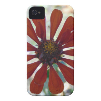 Single Bloom iPhone 4 Case-Mate Cases