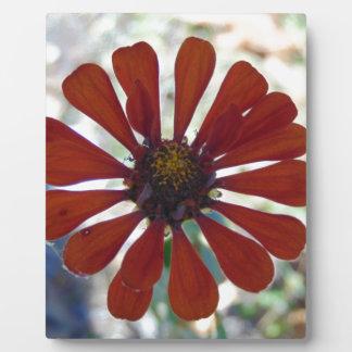 Single Bloom Plaque