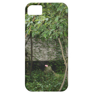 Single Blooming Flower Among Chinese Bamboo Garden iPhone 5 Cases