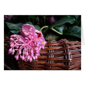 Single Blossom Card