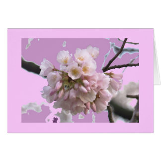 Single Cherry Blossom Card