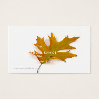 Single Coloured Northern Red Oak Leaf On White Bac Business Card