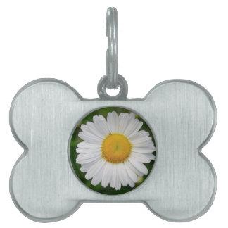 Single Daisy Flower Pet Tag