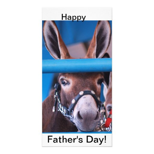 single donkey photo greeting card