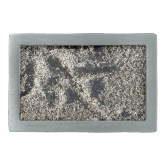 Single footprint of seagull bird on beach sand belt buckle