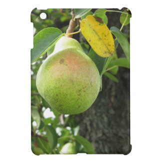 Single green pear hanging on the tree case for the iPad mini