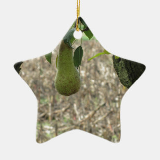 Single green pear hanging on the tree ceramic ornament