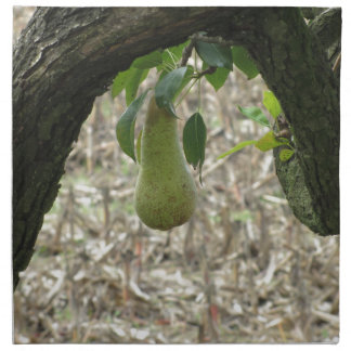 Single green pear hanging on the tree napkin