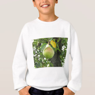 Single green pear hanging on the tree sweatshirt