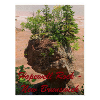 Single Hopewell Rock New Brunswick Postcard