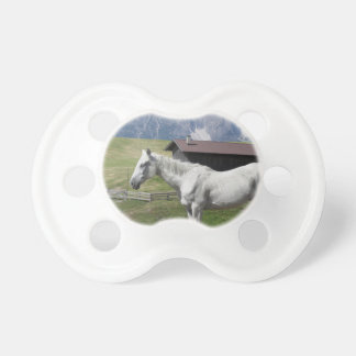 Single horse in an alpine pasture pacifiers