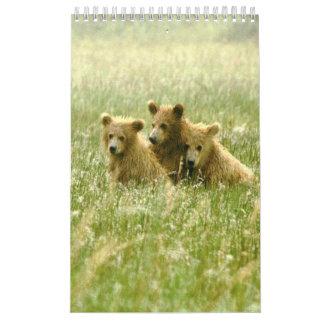 Single Page, Small,  Calendar  scenery & wildlife