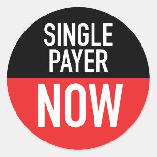 Single Payer Now Sticker